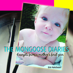 the-mongoose-diaries